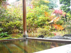 温泉 お風呂(露天風呂)
