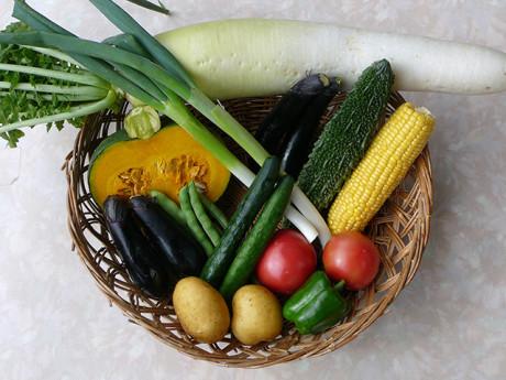 山の宿『たちばな家』の菜園で採れた野菜